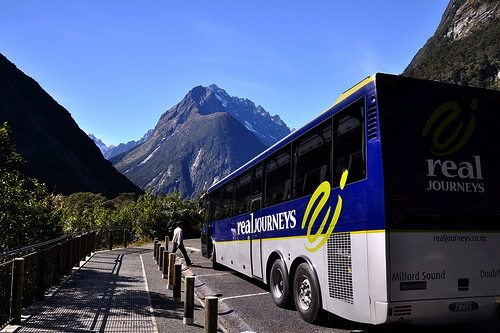 bus-new-zealand RTW Transportation