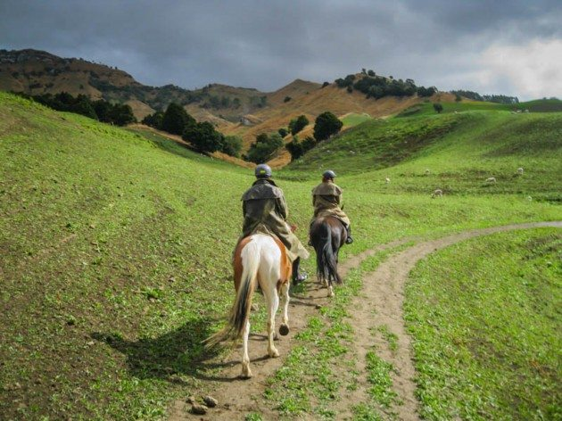 River Valley Stables Horse Trekking