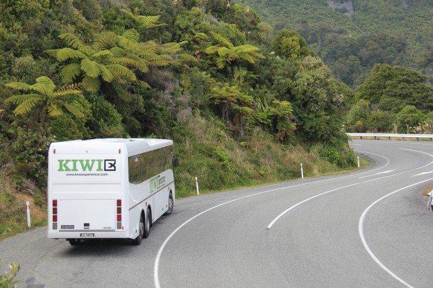 Kiwi Experience New Zealand RTW Recap