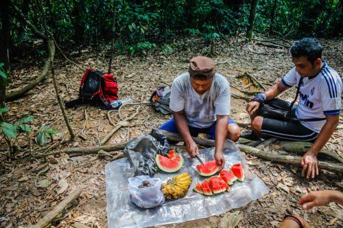 Thomas Jungle Tours Bukit Lawang