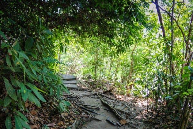 Penang National Park Monkey Beach Trek Malaysia