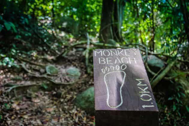Taman Negara National Park Penang Malaysia RTW Recap