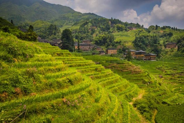 Hiking rice terraces Guilin China