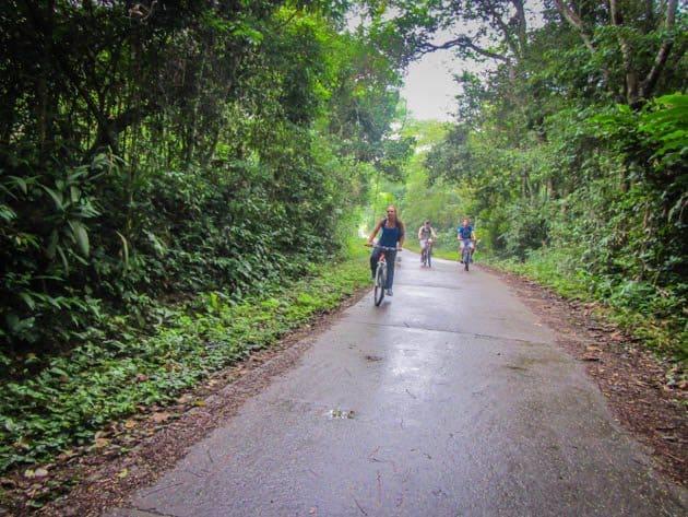 Cuc Phuong National Park Vietnam Buffalo Run
