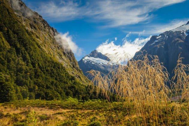 Monkey Creek New Zealand Top Travel Photos