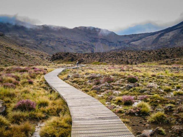 Tongariro Alpine Path New Zealand