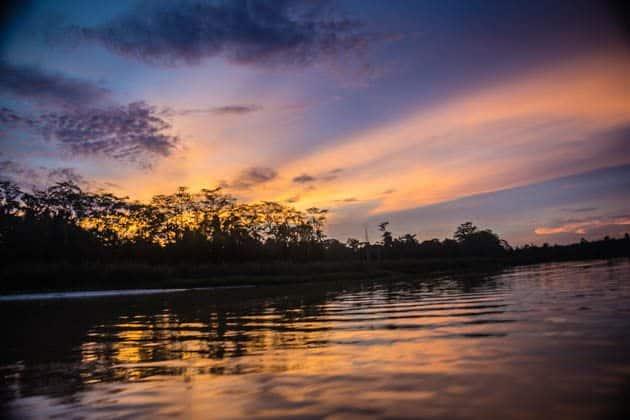 Rainforest Sunset Sukau Kinabatangan River Borneo