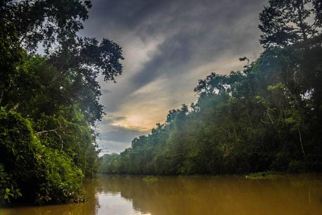 Kinabatangan River Sabah Borneo