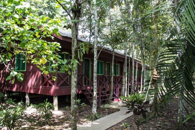 Sukau Greenview Sabah Borneo RTW Recap