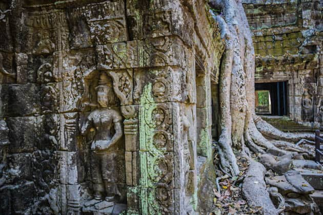 Complete Guide to Visiting the Angkor Temples Ta Phrom Siem Reap