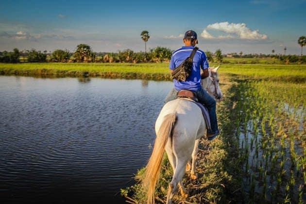 Horseback Riding Siem Reap Cambodia