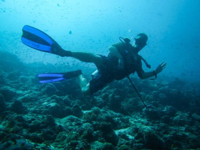 Scuba Diving the Maldives Divergent Travelers