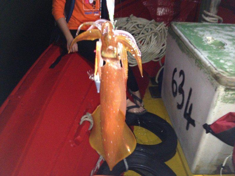 International Squid Jigging Festival Terengganu Malaysia