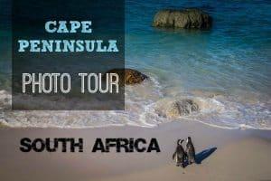 Cape Peninsula South Africa