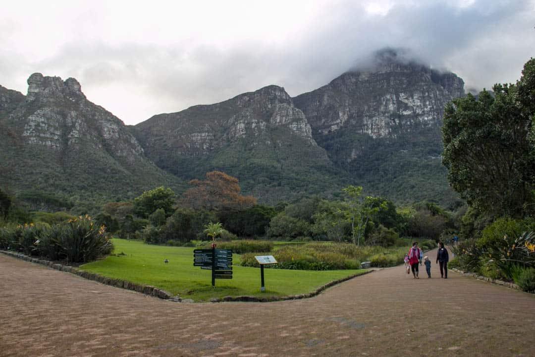 Kirstenbosch Gardens Cape Town South Africa