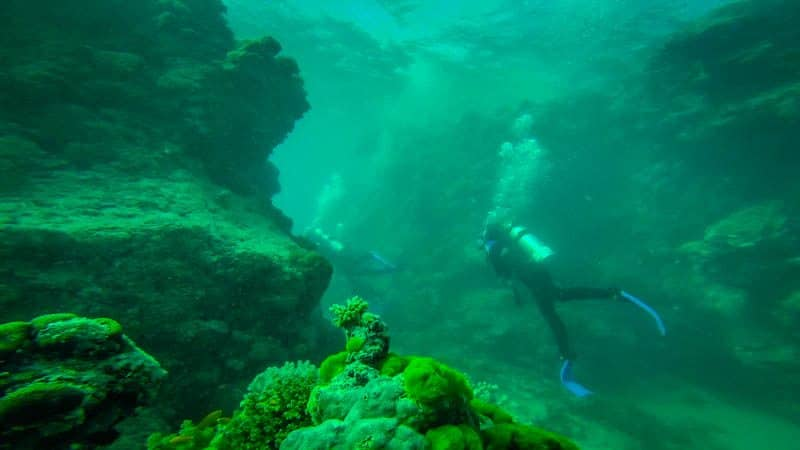 Scuba Diver Great Barrier Reef