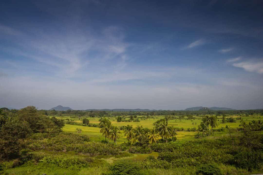 Sigriya Sri Lanka Landscape