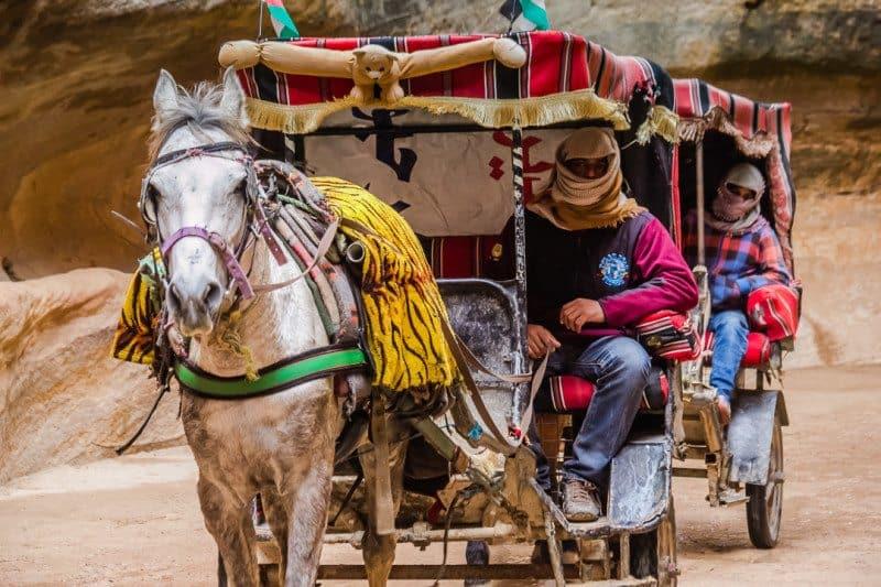 Horse Carriage Petra Jordan