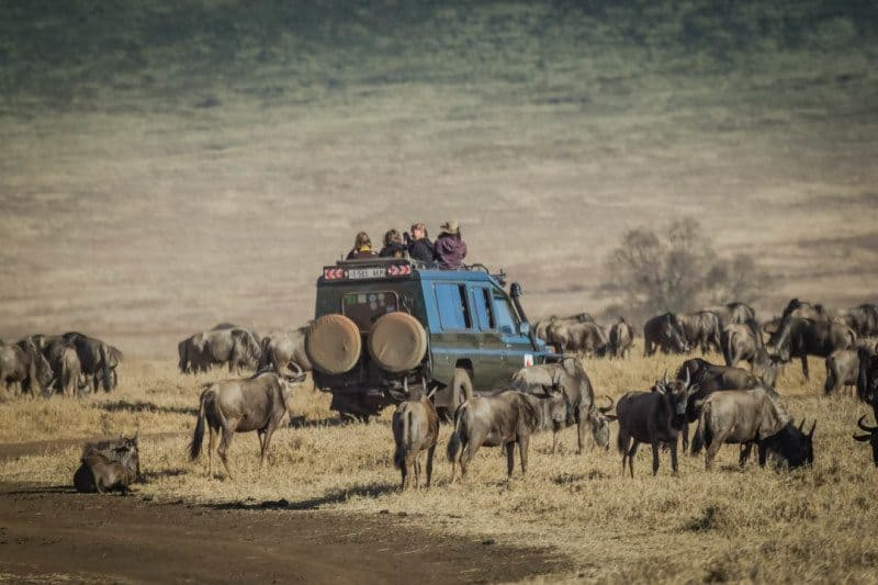 Africa Overland Trip Budget - Oasis Overland | Divergent