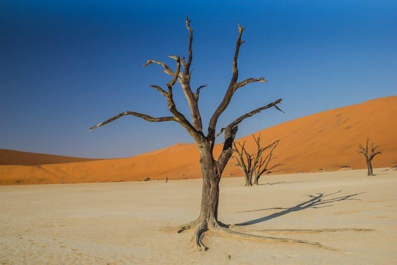 Sossusvlei Deadvlei Namibia Divergent Travelers