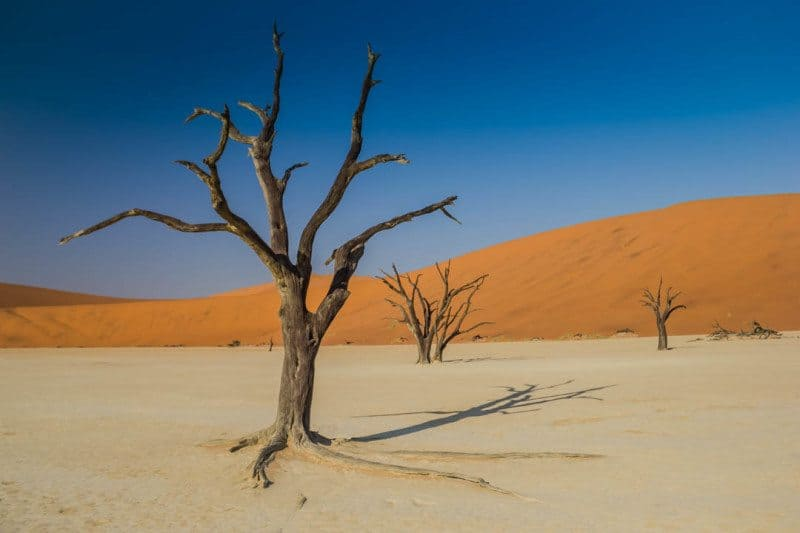 Deadvlei Namibia Visit Africa