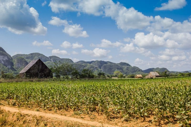 How to Visit Cuba Vinales Valley