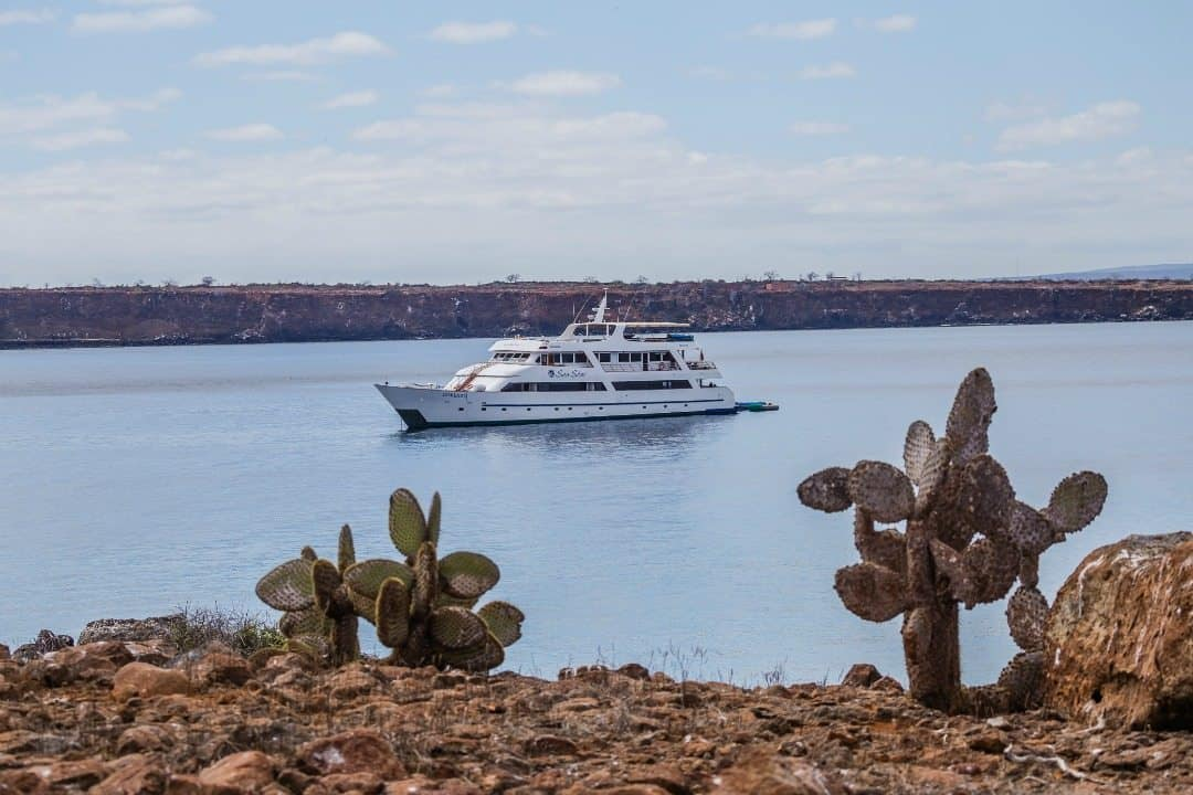 Galapagos Luxury Cruise on the Sea Star Journey