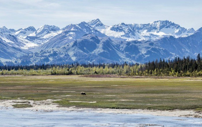 Alaska National Parks Divergent Travelers