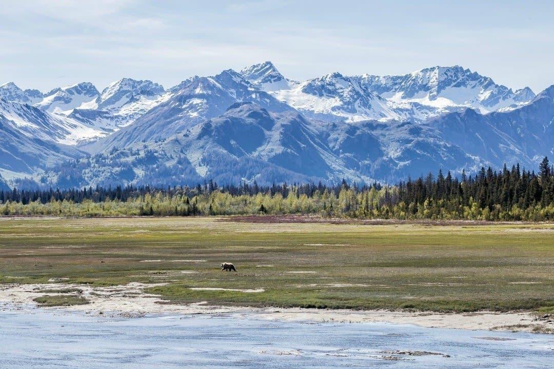 Alaska National Parks Divergent Travelers