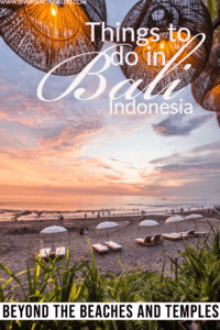 21 EPIC Things to Do in Bali Pinterest Pin