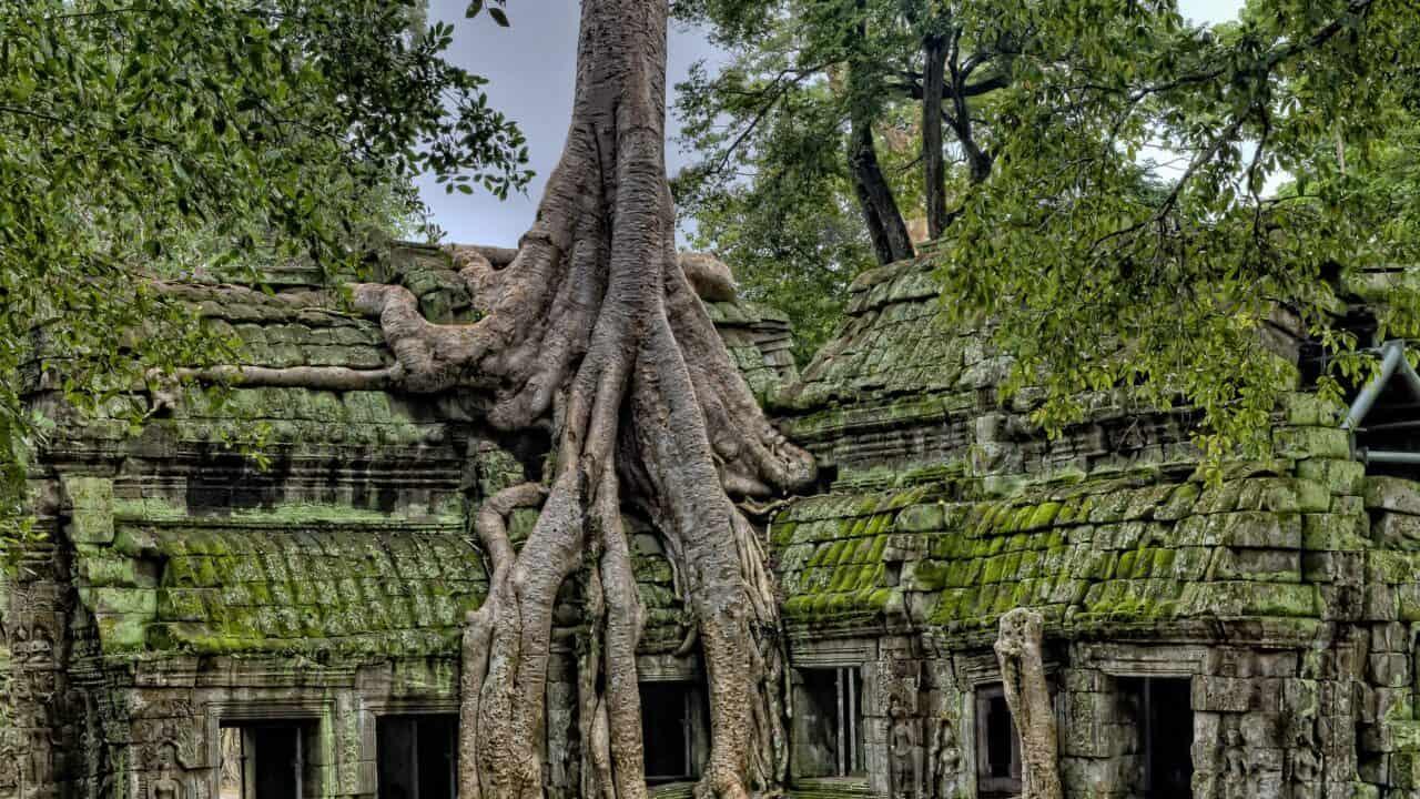 Cambodia Travel Recap