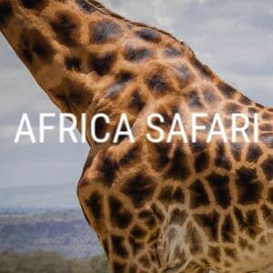 Africa Safari Travel