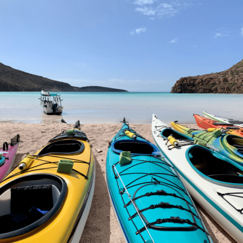 Kayaking in Mexico: 4 Days on the Sea of Cortez