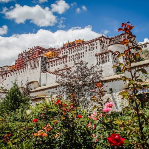 Potala Palace - things to do in Tibet