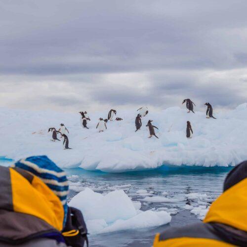 Visit Antarctica Tourism