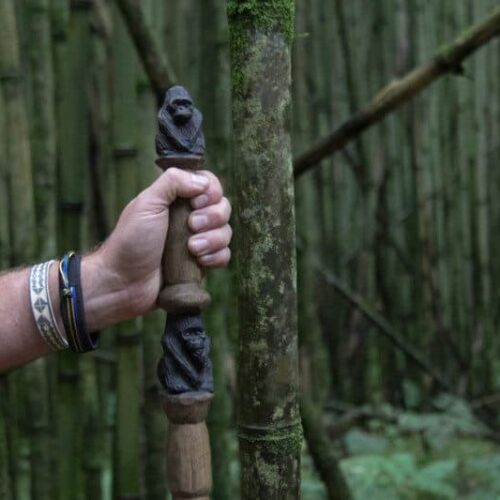 Gorilla Hiking Pole Rwanda