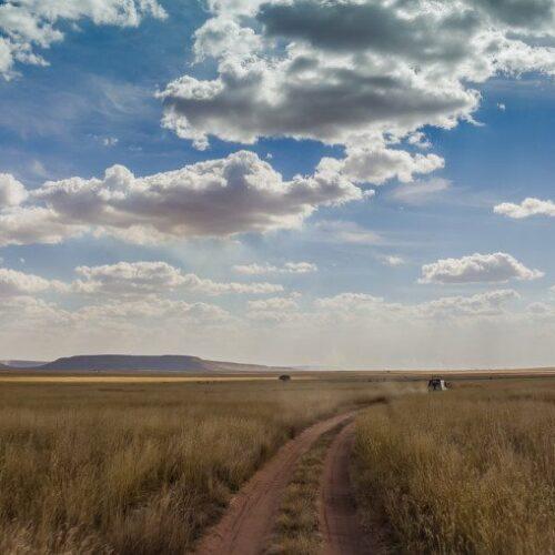 Serengeti Safari Africa