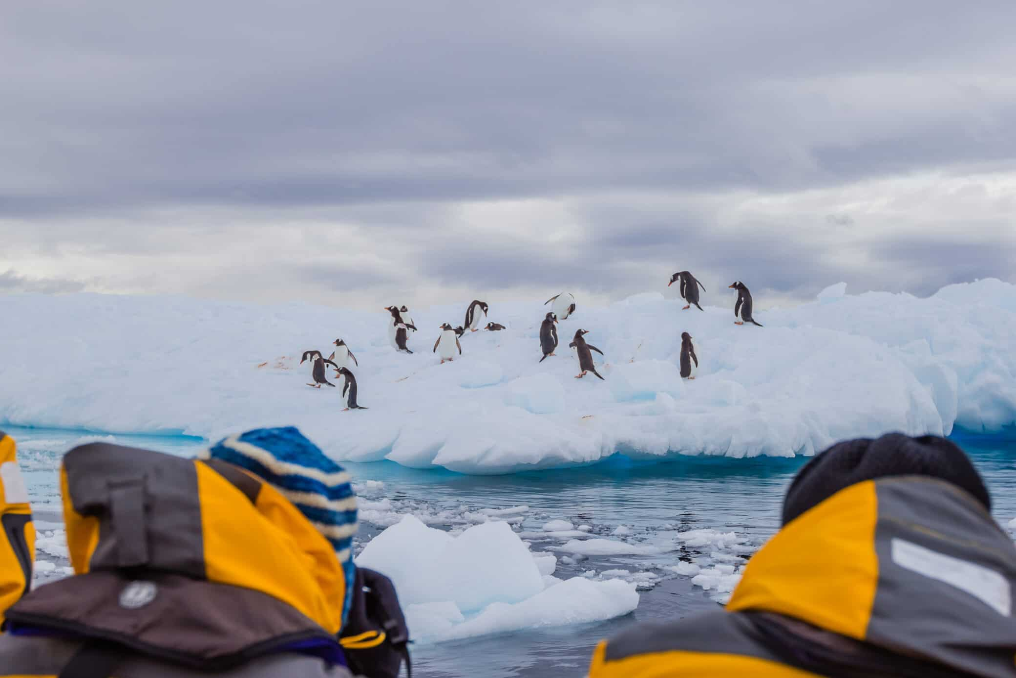 How to Visit Antarctica Responsibly: Antarctica Tourism Deep Dive